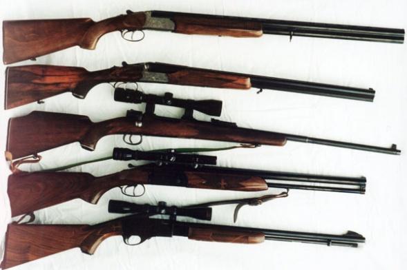 Выбираем первое охотничье ружье нарезное за