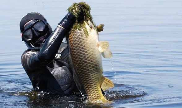 Подводная охота на мажайском водохранилище